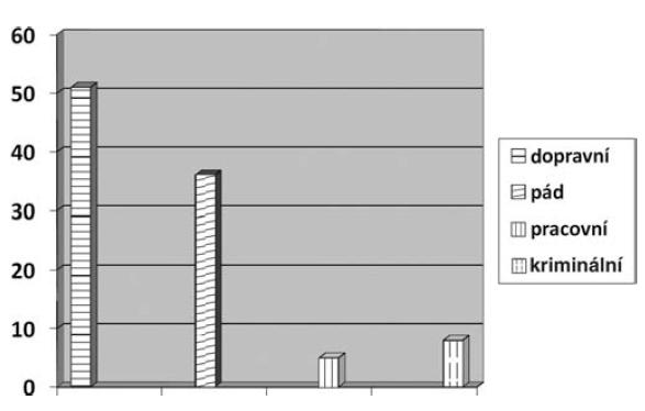Příčiny úrazů v % (n = 515)