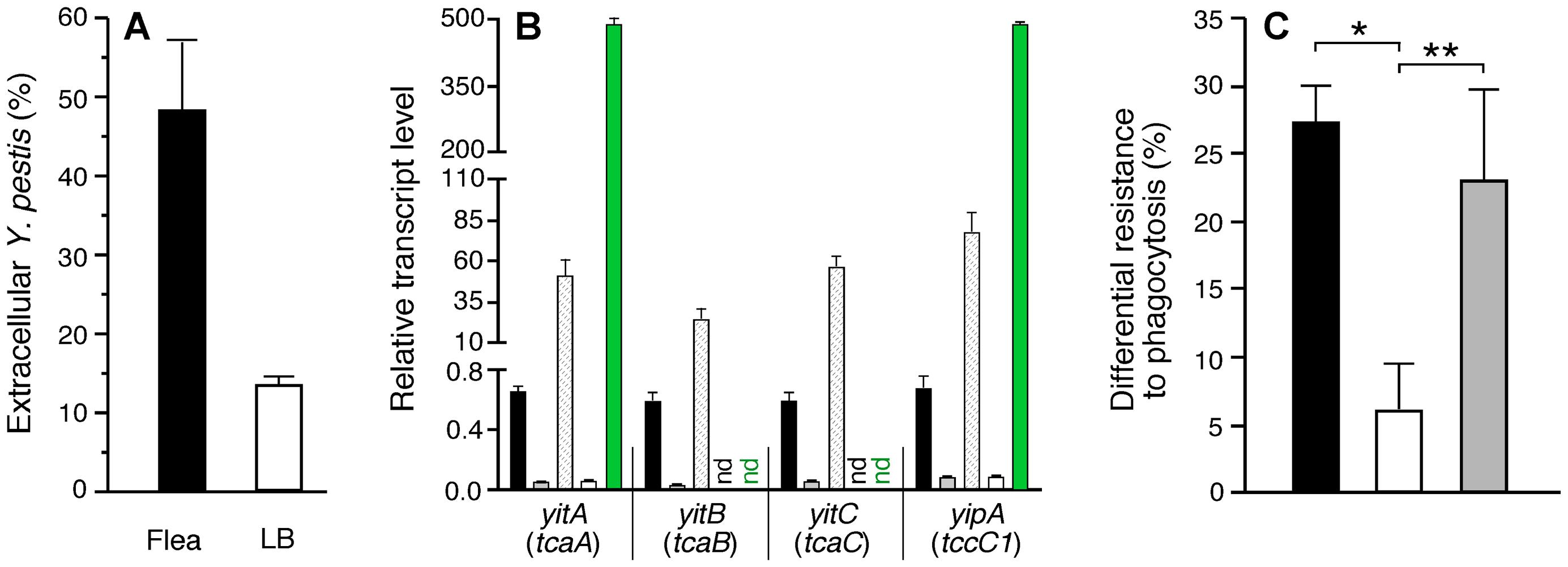 Phagocytosis-resistant phenotype of <i>Y. pestis</i> isolated from fleas correlates with expression level of the <i>yit</i>-<i>yip</i> insecticidal-like toxin genes.