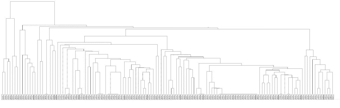 Dendrogram kmenů <i>M. tuberculosis</i> v Praze 2013–2014<br> Fig. 1. Dendrogram of <i>M. tuberculosis</i> strains from Prague, 2013–2014
