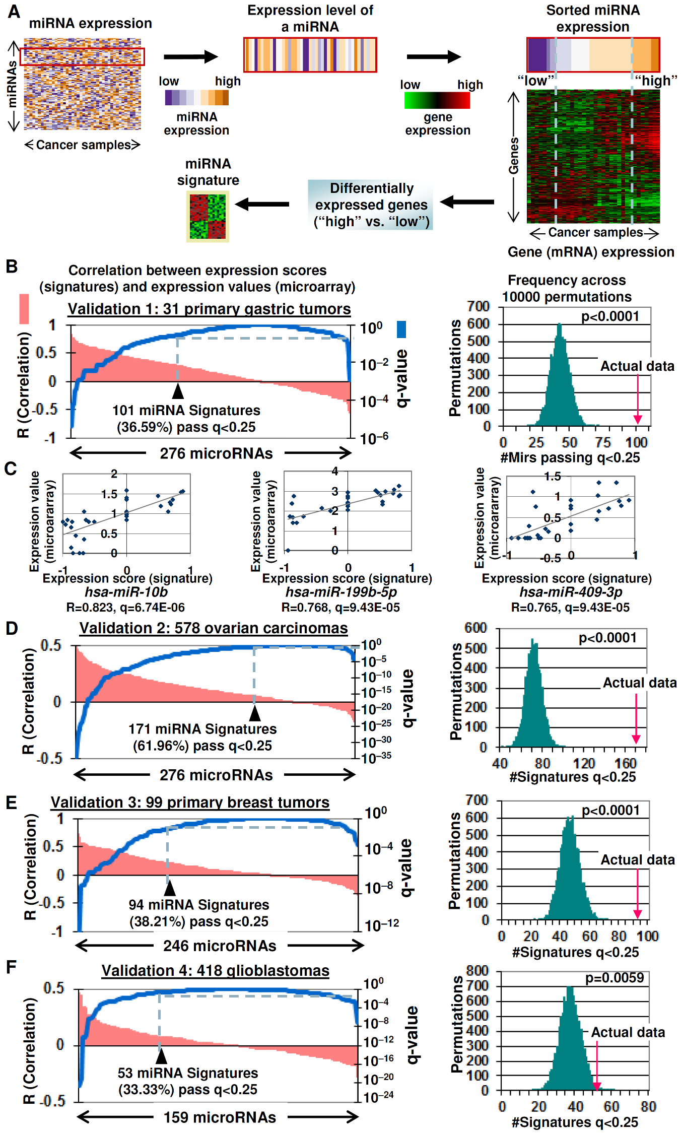 Gene expression signatures as surrogates of miRNA expression.