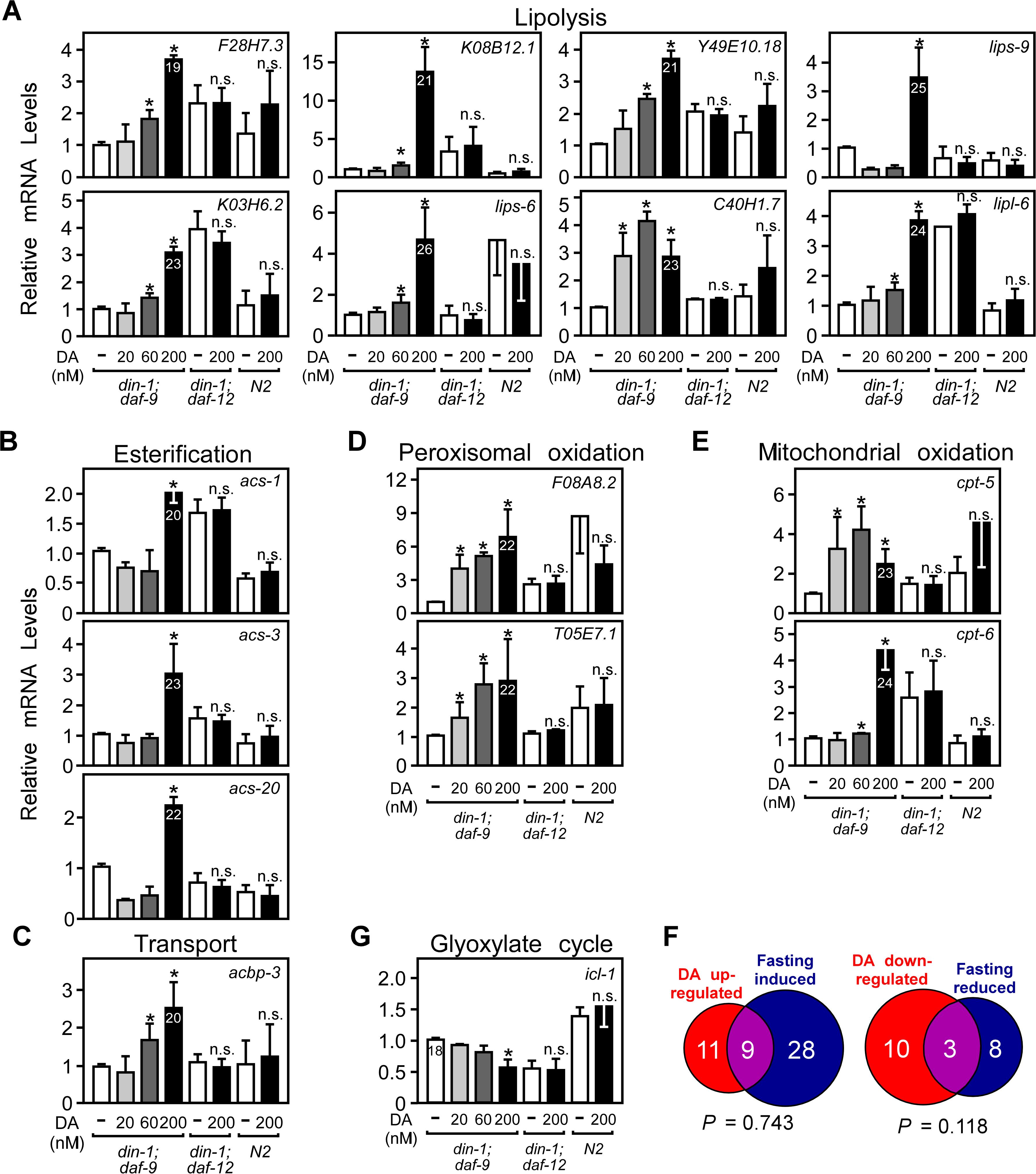 Regulation of fat utilization genes by DAF-12 in <i>C</i>. <i>elegans</i>.