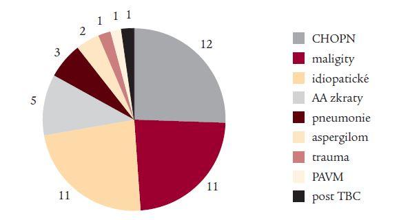 Příčiny krvácení (47 nemocných s klinicky významnou hemoptýzou).