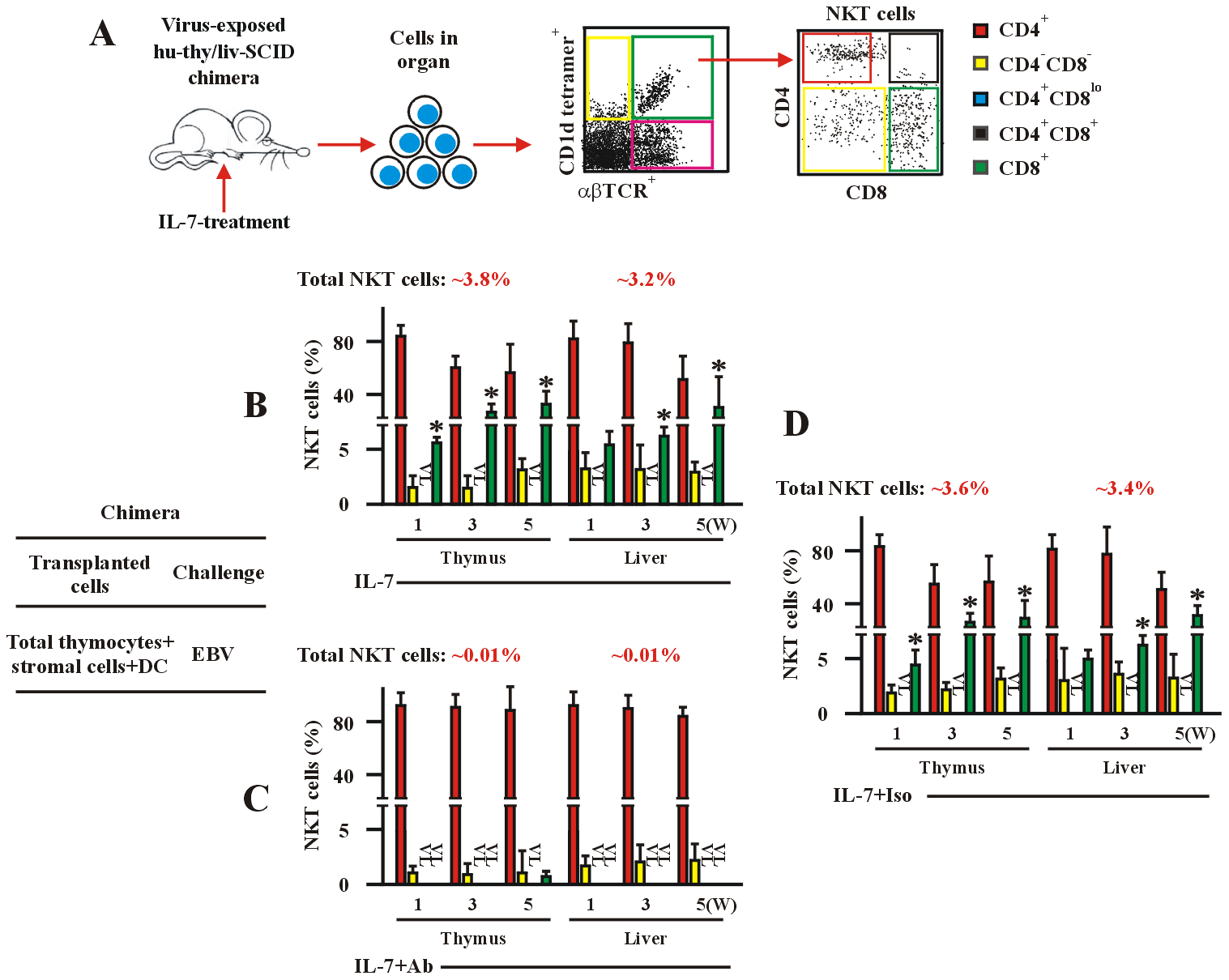 IL-7 is required for EBV-induced CD8<sup>+</sup> NKT cell development <i>in vivo</i>.