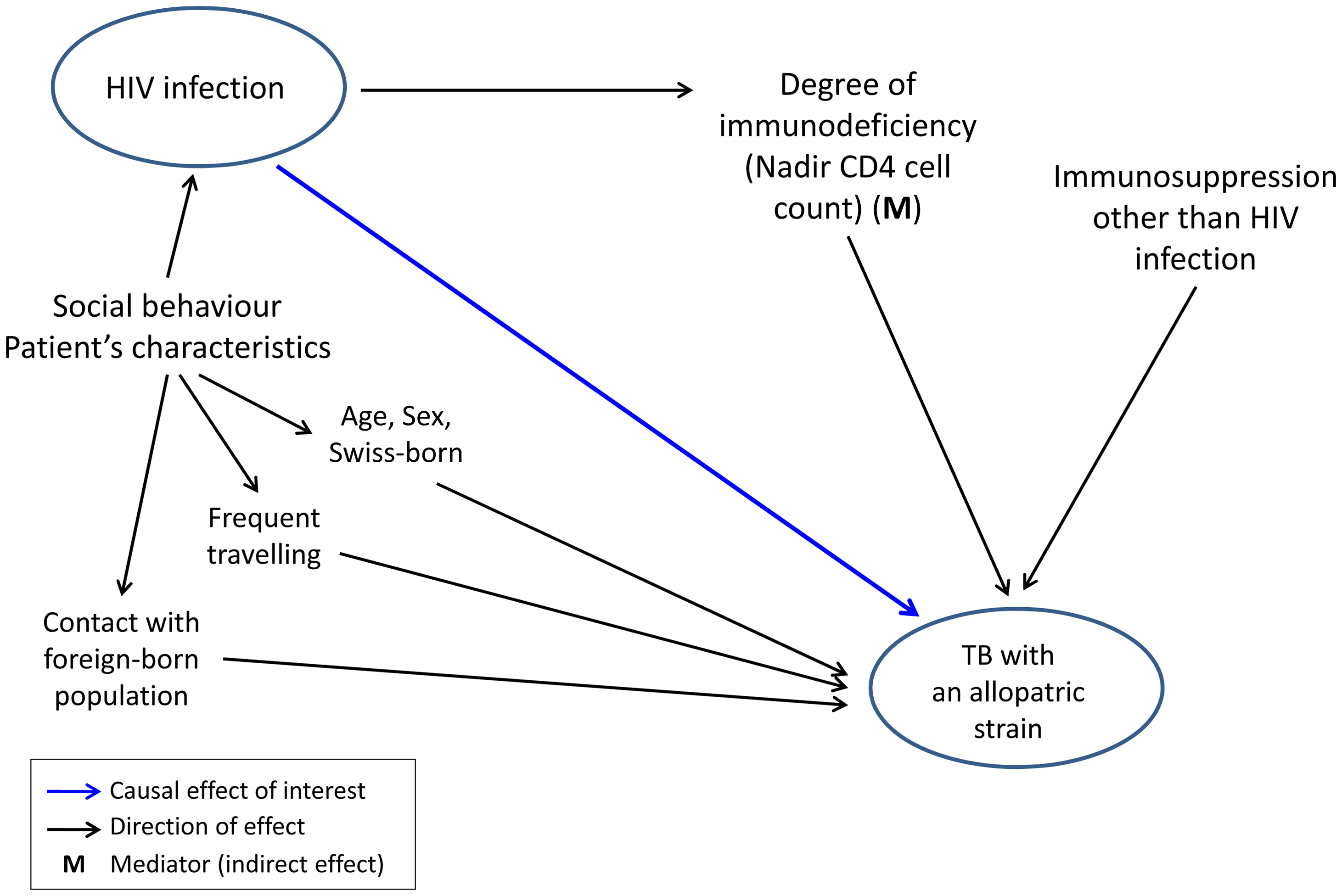 Graphical model showing direct and indirect potential effects of HIV infection on tuberculosis (TB) caused by an allopatric <i>Mycobacterium tuberculosis</i> strain, in the context of other potential factors influencing this association.
