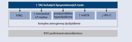Schéma 15.2   Charakteristika aterogénnej dyslipidémie