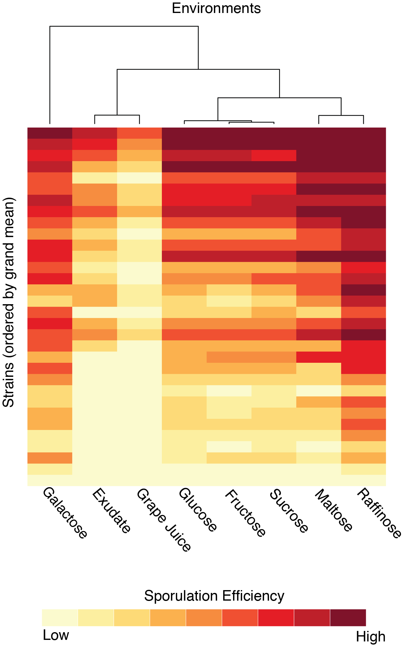 Sporulation efficiencies of the strains clustered by environment.