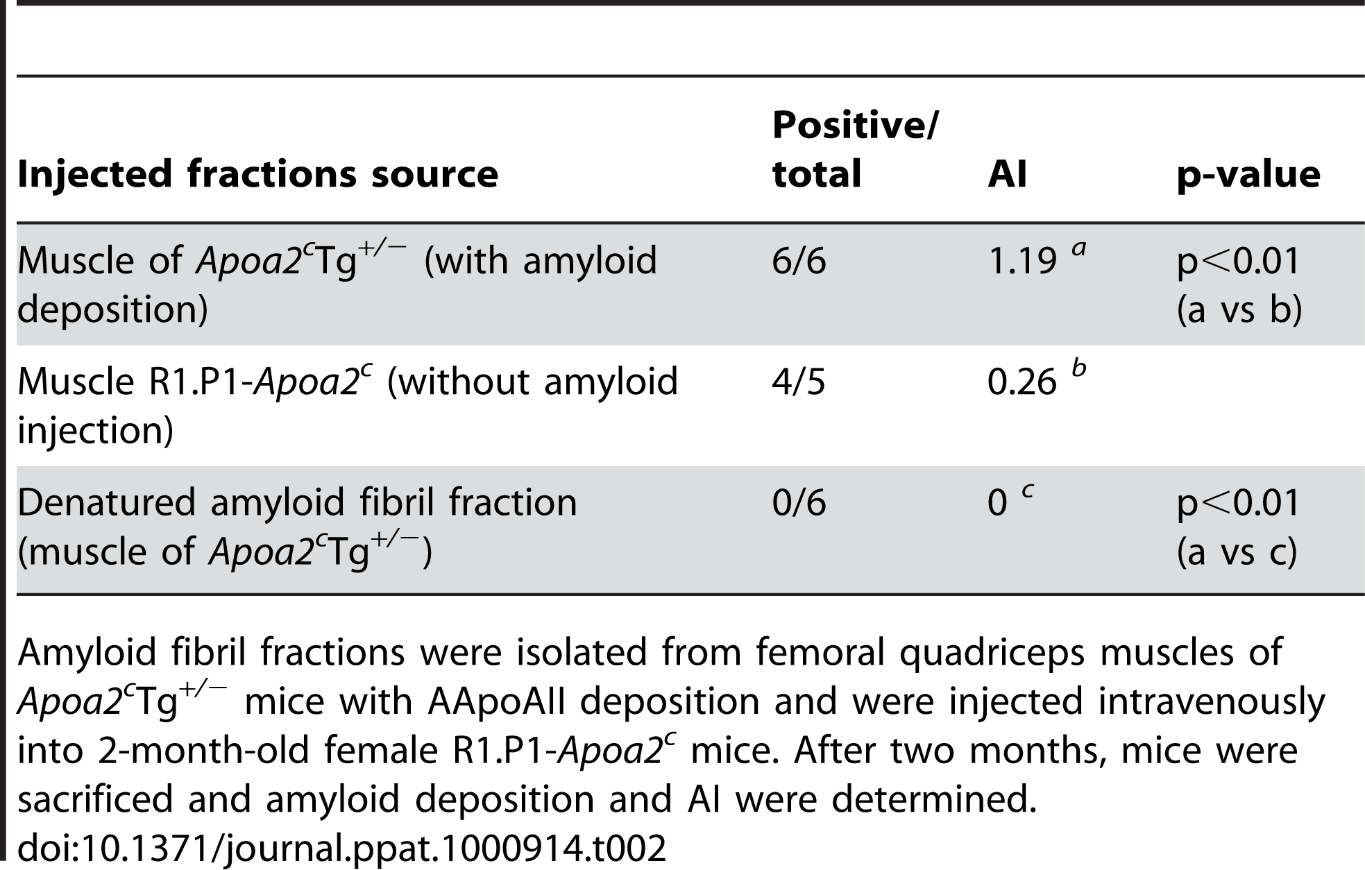 AApoAII amyloid deposits in R1.P1-<i>Apoa2<sup>c</sup></i> mice injected with amyloid fibril fractions isolated from the muscles of AApoAII-deposited mice.