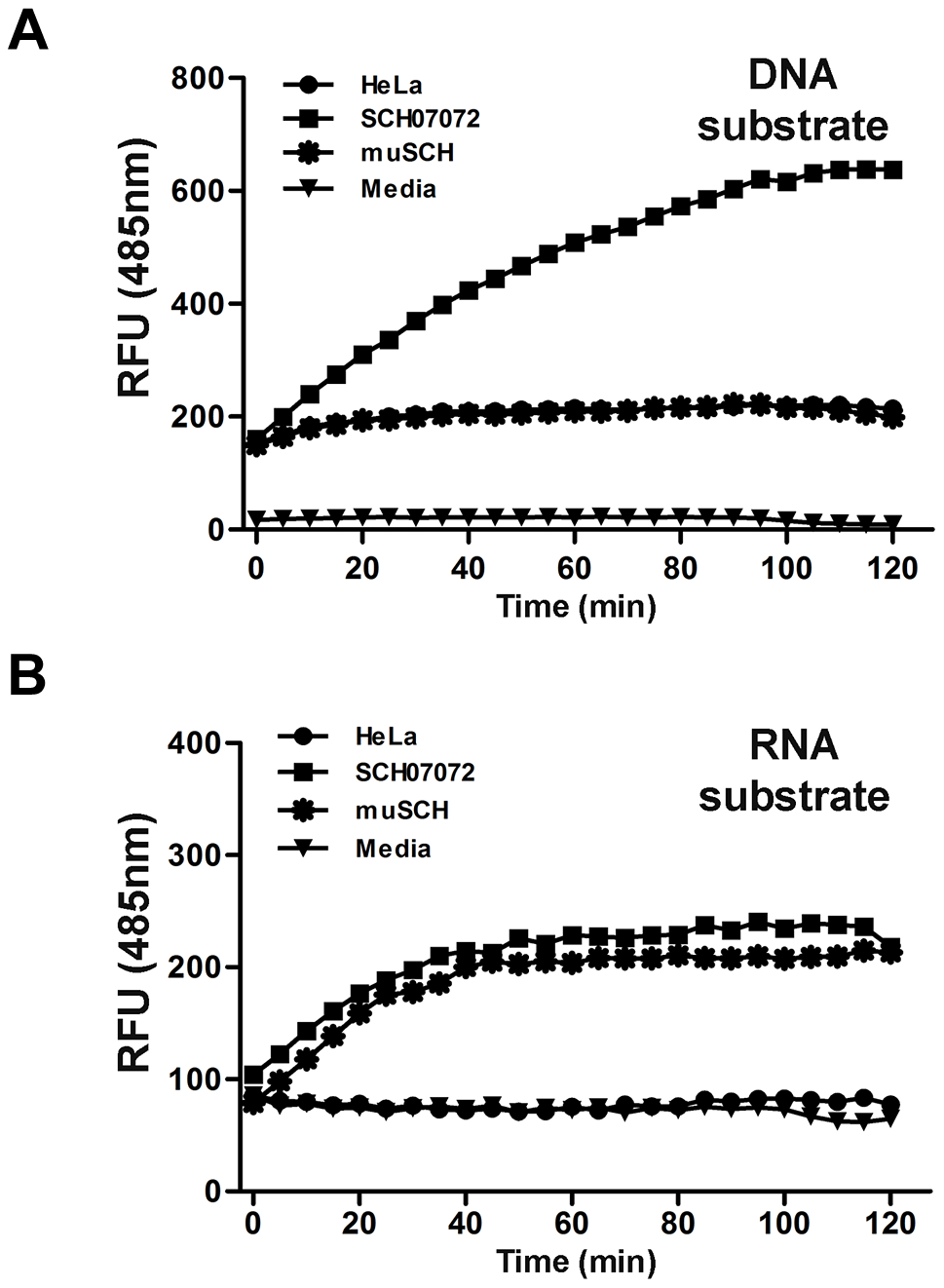 3D8 scFv protein have DNase and RNase activity <i>in vitro</i> (FRET assay).