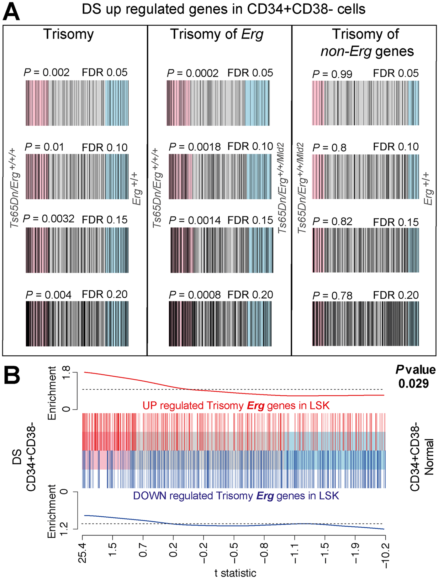 Human DS Lin<sup>-</sup>CD34<sup>+</sup>CD38<sup>-</sup> HSPC gene expression changes correlate with changes due to trisomy of <i>Erg</i> in Ts(17<sup>16</sup>)65Dn LSK cells.