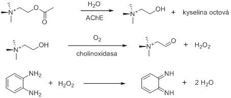 Využití cholinoxidasy při stanovení aktivity AChE. Znázorněno je i použití chromogenního substrátu reagujícího se vznikajícím peroxidem vodíku. Reakční schéma je upraveno z citovaných prací <sup>61, 62)</sup>.