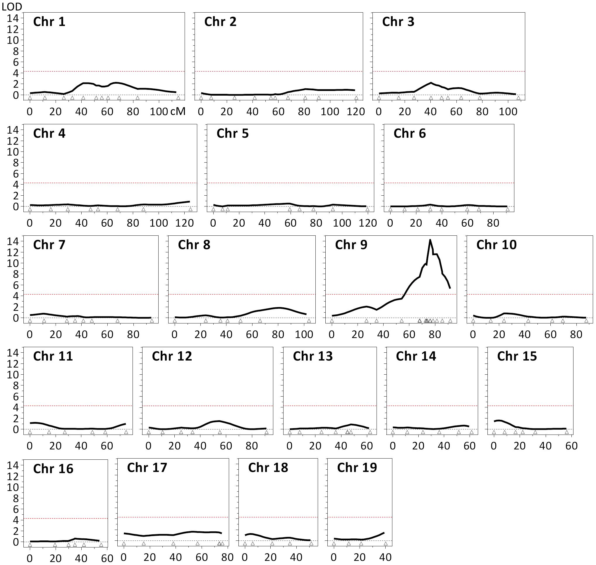 Identification of a quantitative trait locus (QTL) associated with striatal <i>HTT</i> CAG instability.