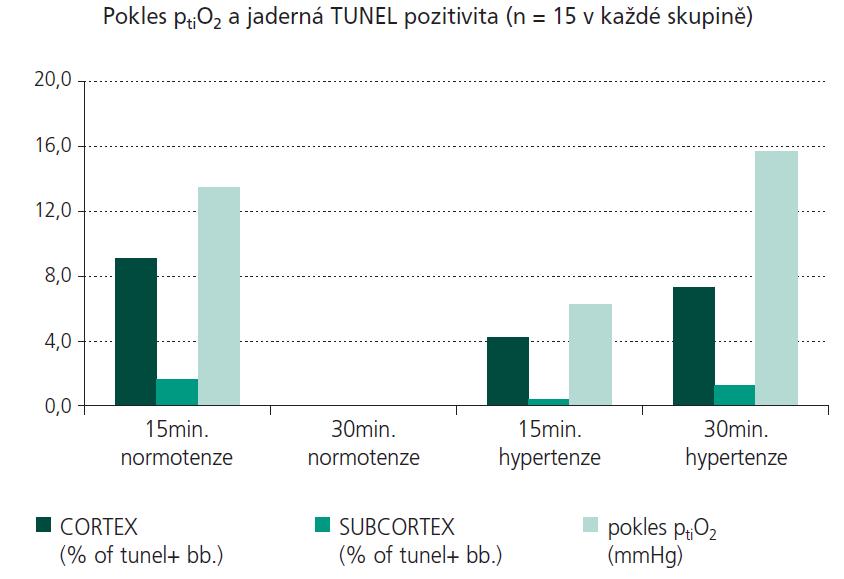 Srovnání poklesu ptiO<sub>2</sub> (mmHg) s % TUNEL pozitivních buněk v jednotlivých skupinách, časových intervalech a oblastech mozku.