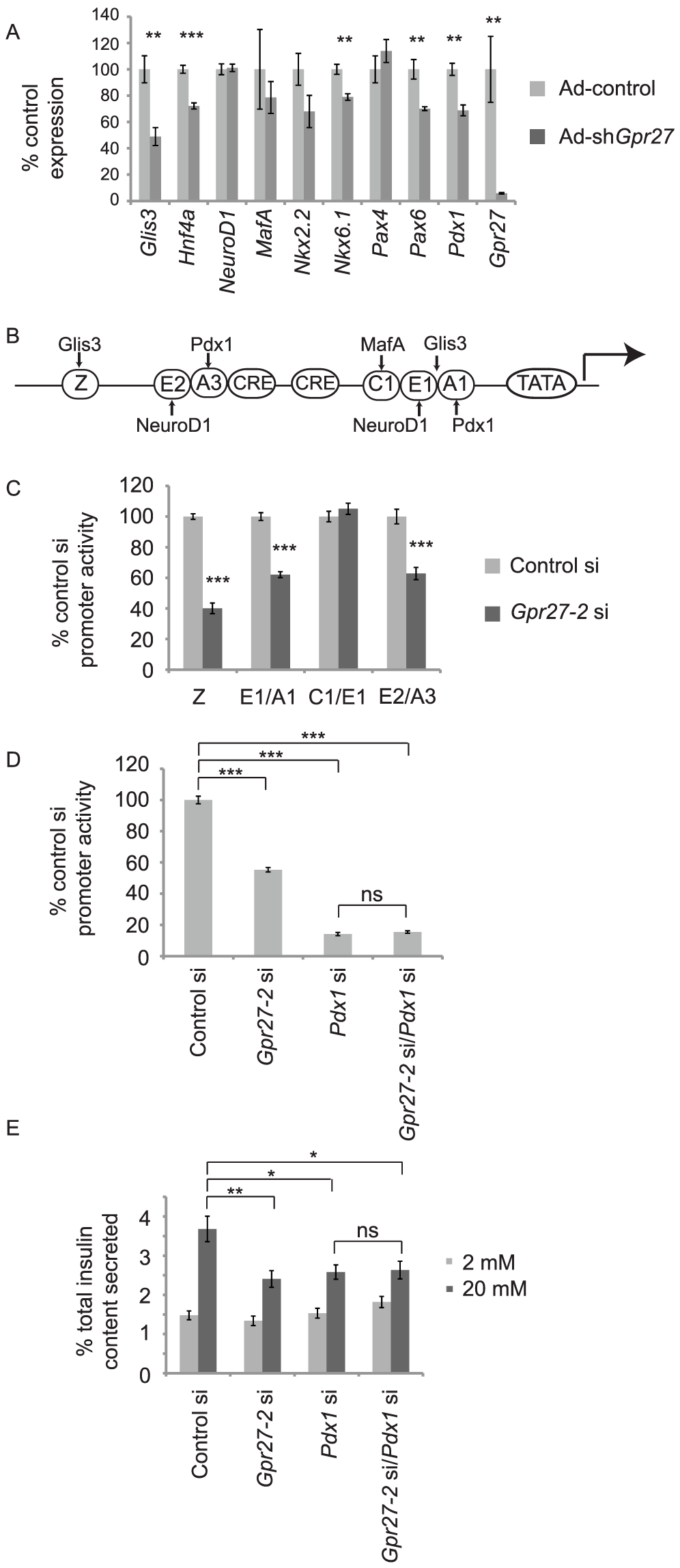 <i>Gpr27</i> knockdown affects multiple transcription factors and requires <i>Pdx1</i> for its effect on the insulin promoter.