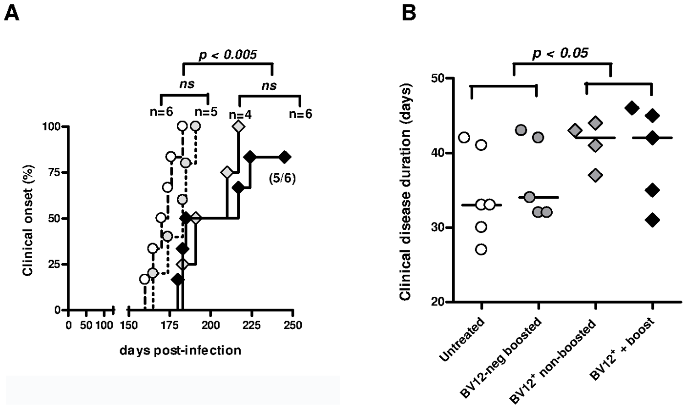 Adoptive transfer of minimal amounts of transgene-bearing CD4<sup>+</sup> T cells delays scrapie onset and prolongs the clinical phase.