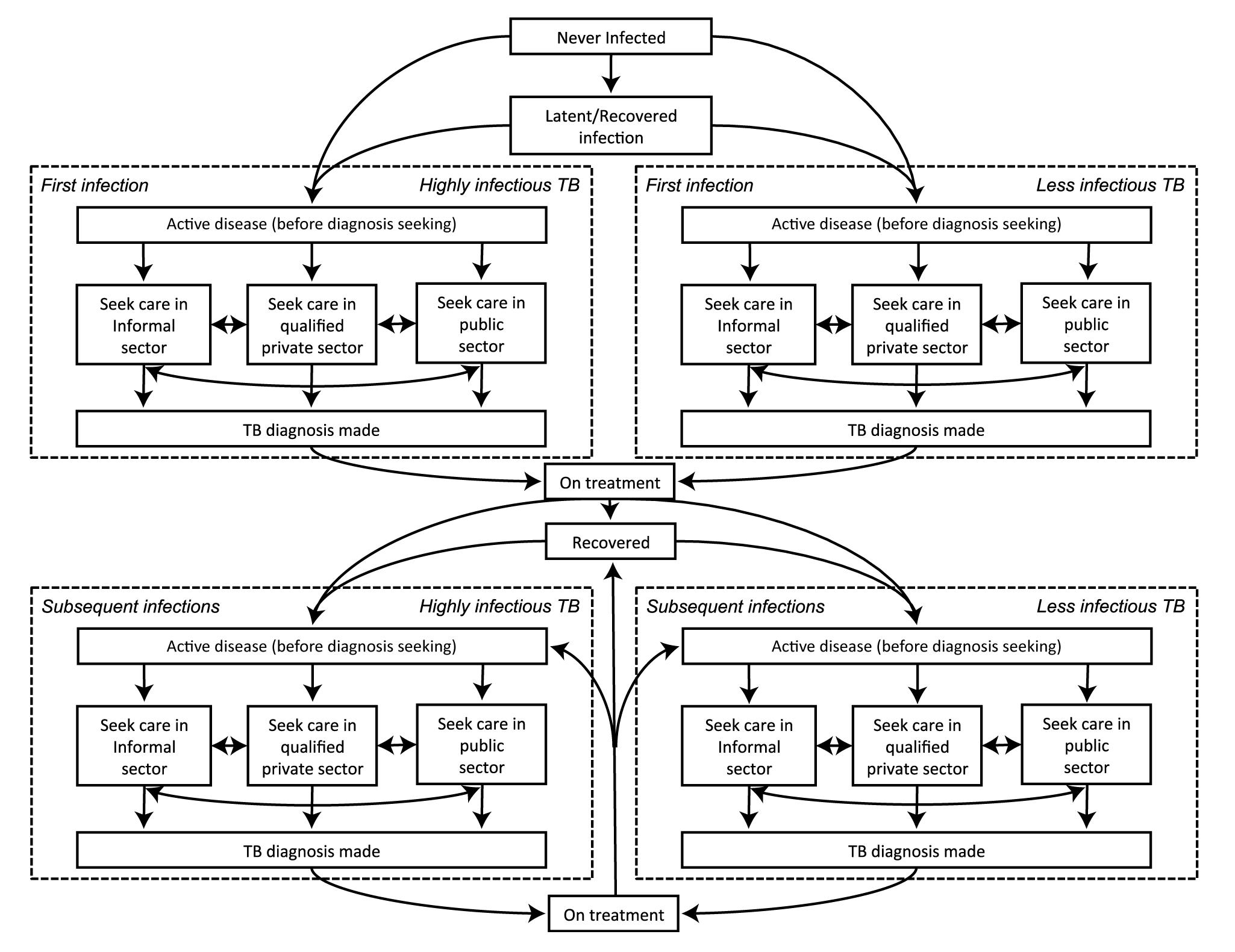 Model schematic.