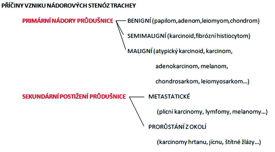 Rozdělení nádorových příčin rozvoje stenóz trachey