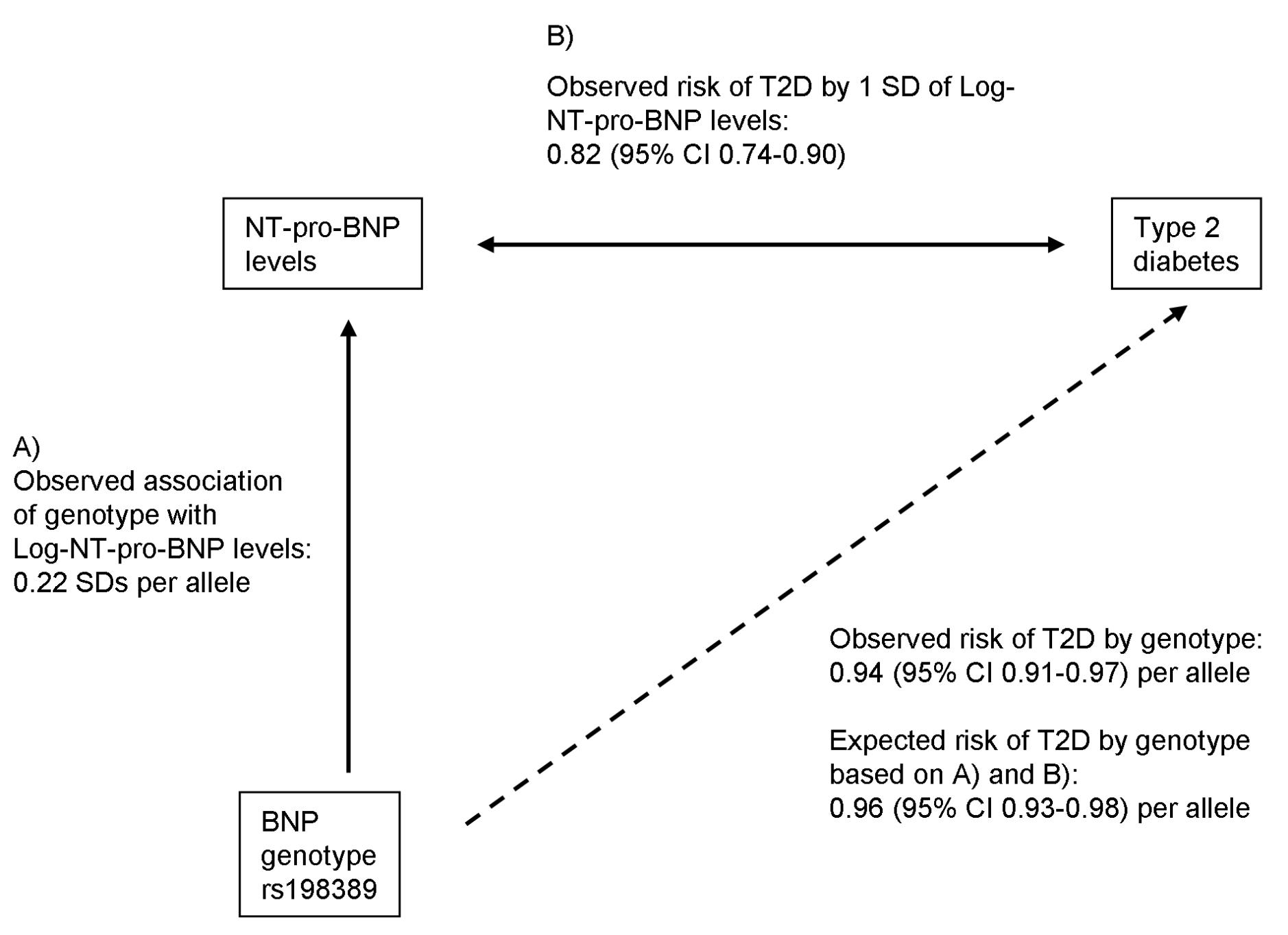 Mendelian randomization approach for the association between BNP and T2D.