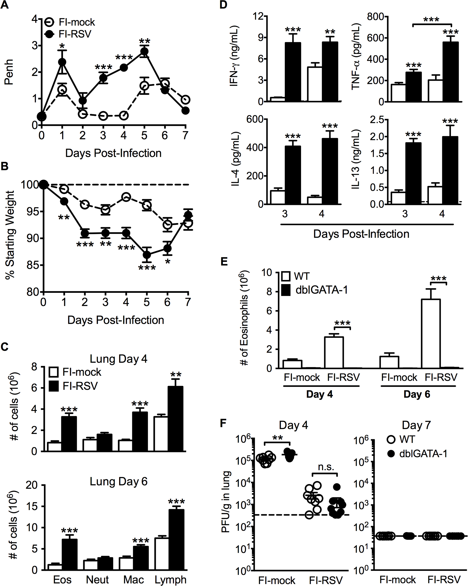 Development of VED following RSV challenge of FI-RSV-immunized mice.