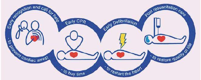 Řetězec přežití (European Resuscitation Council Guidelines for Resuscitation 2005).