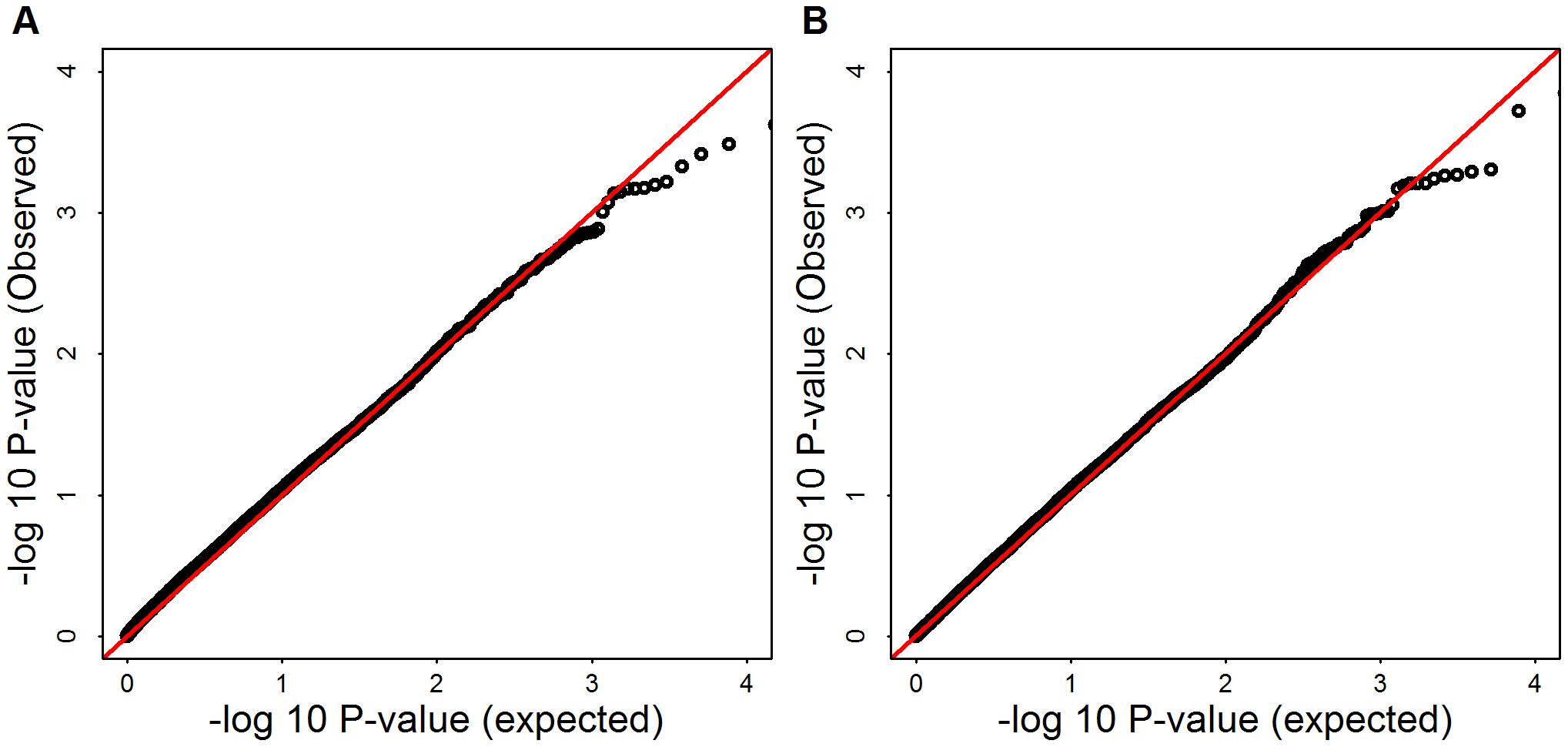 -log10(observed p-values) versus -log10(expected p-values) of SKAT and Burden test for Mega-analysis.