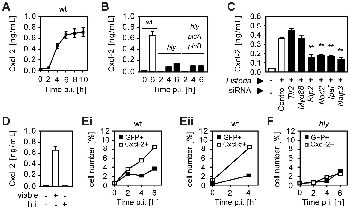 <i>Listeria</i>-induced activation of intestinal epithelial cells is largely dependent on invasion and endosomal lysis.