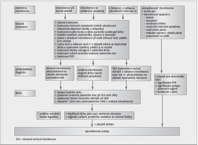 Schéma 3. Algoritmus pro primární postup při řešení močové inkontinence u žen.