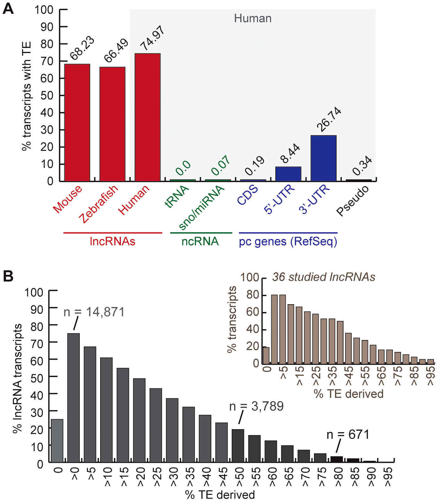 TE occurrence in lncRNAs.