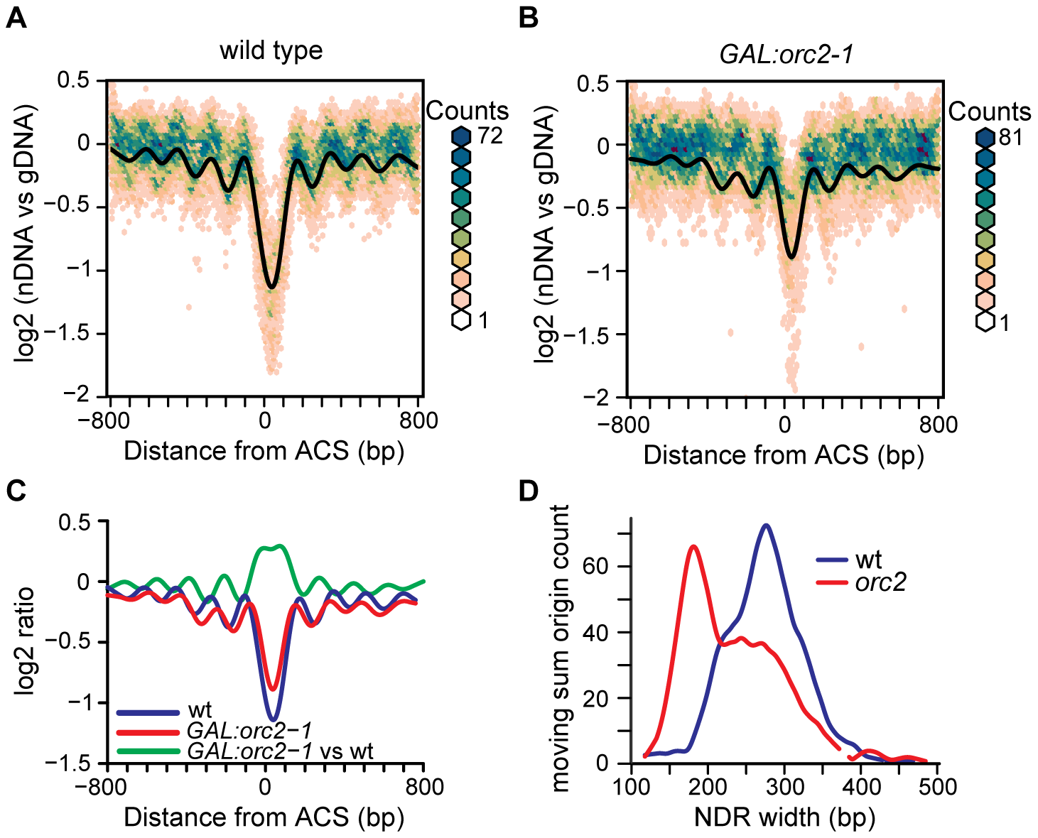 The effect of ORC depletion on nucleosome occupancy.