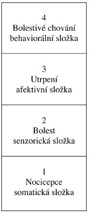 Schéma 1. Konceptuální model bolesti (Loser, 1982)