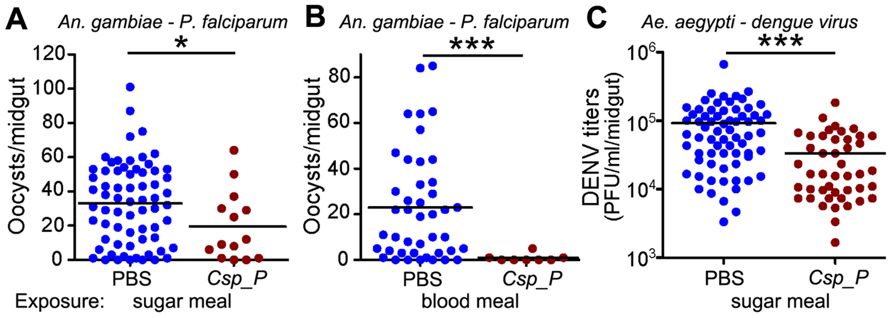 <i>Csp_P</i> reduces mosquitoes' susceptibility to malaria and dengue infection.
