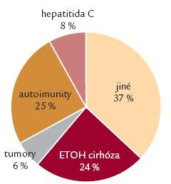 Provedené transplantace – diagnostické skupiny.