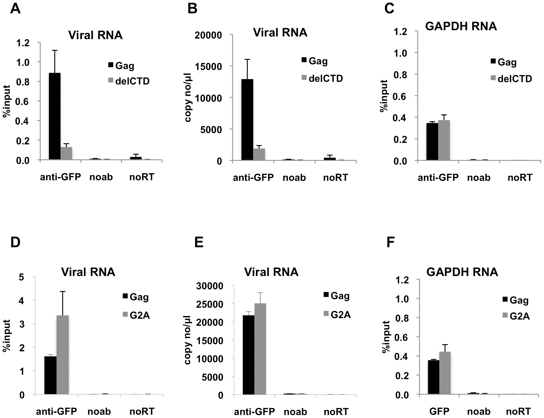 Interaction of Gag with HIV-1 genome is enhanced by an intact CA domain but not by Gag myristoylation.