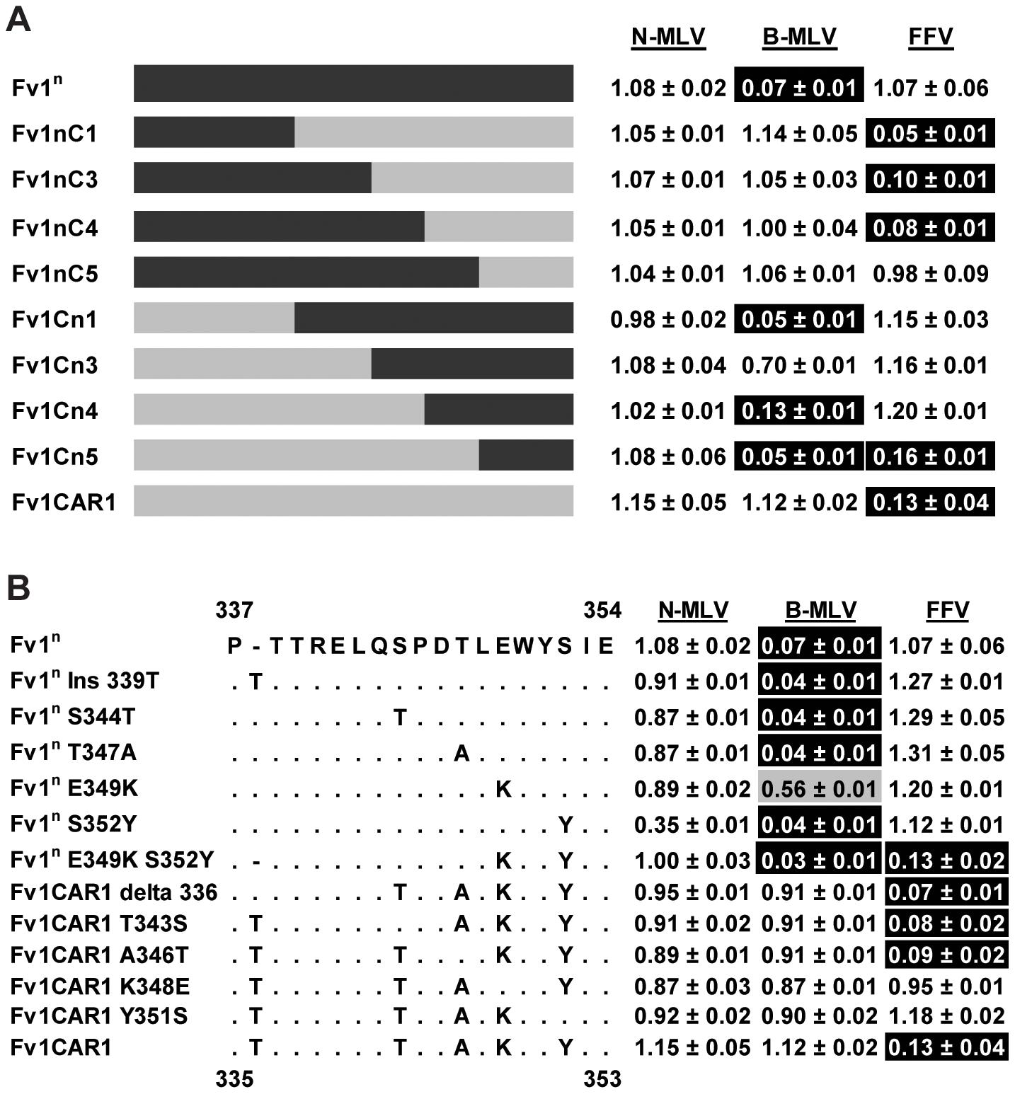 Mapping the determinants of FFV restriction by Fv1 from <i>M. m. caroli</i>.