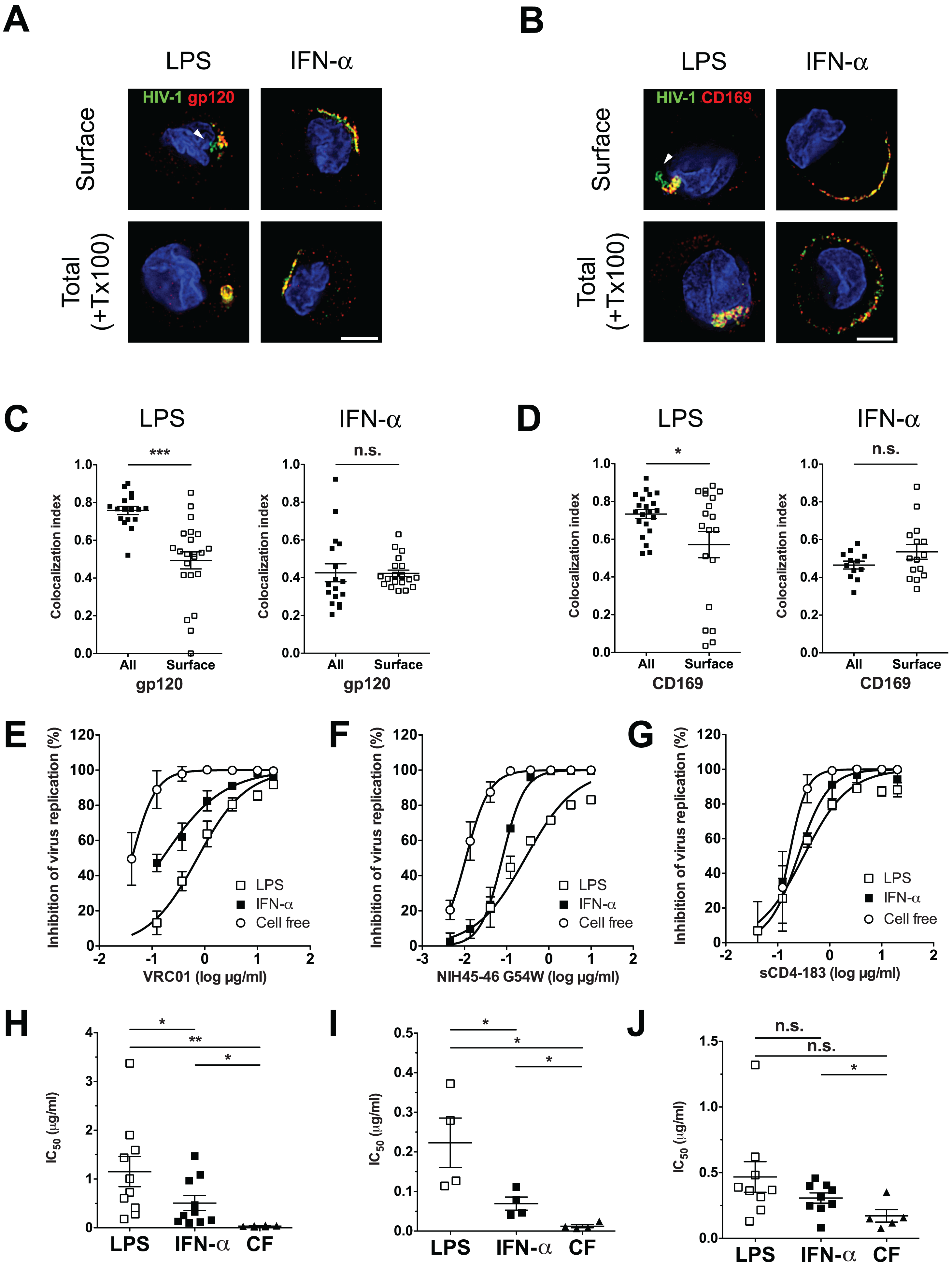 Neutralization of HIV-1 by anti-gp120 bNAbs is attenuated upon virus localization within CD169<sup>+</sup> VCCs in LPS-matured DCs.