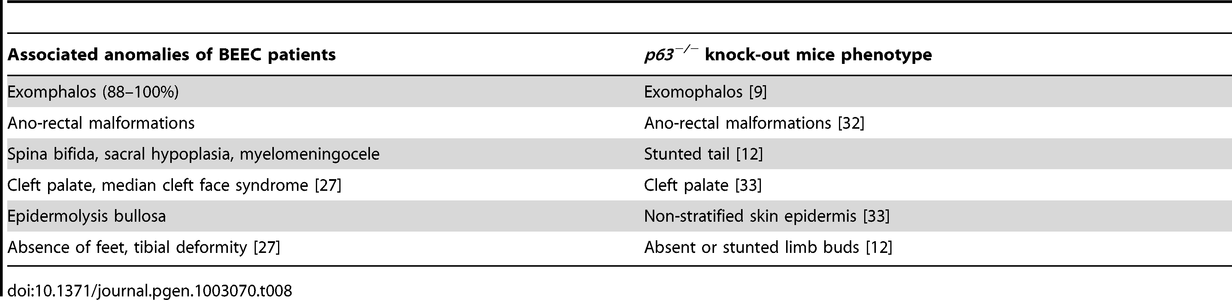 The associated anomalies of BEEC patients compared with the <i>p63<sup>−/−</sup></i> mouse phenotype.
