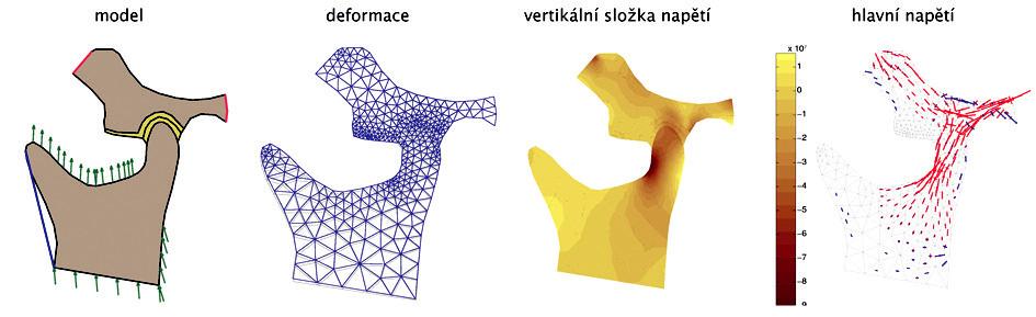 Série obrázků pro model č. 2 - a, b, c, d - zleva doprava.