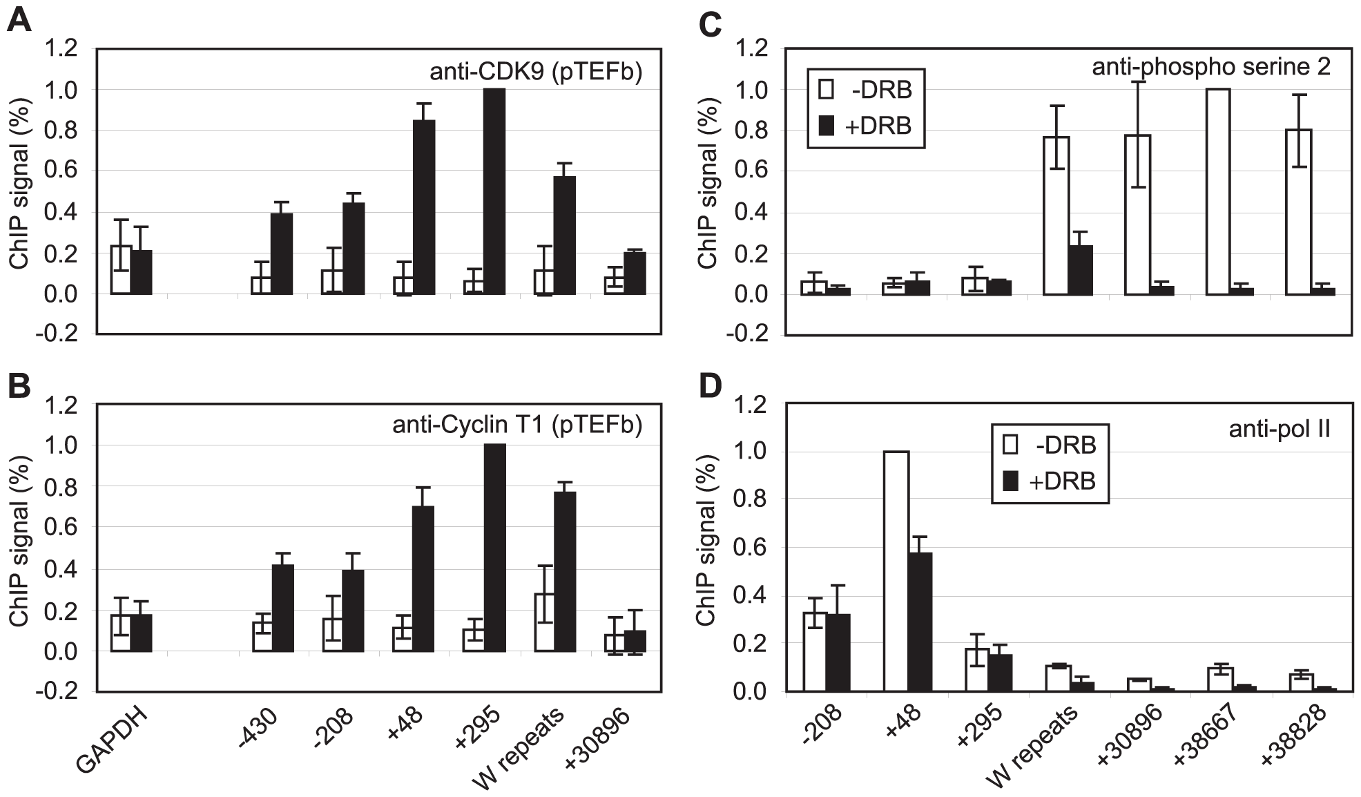 pTEFb is recruited to Cp and is required for serine 2 phosphorylation.