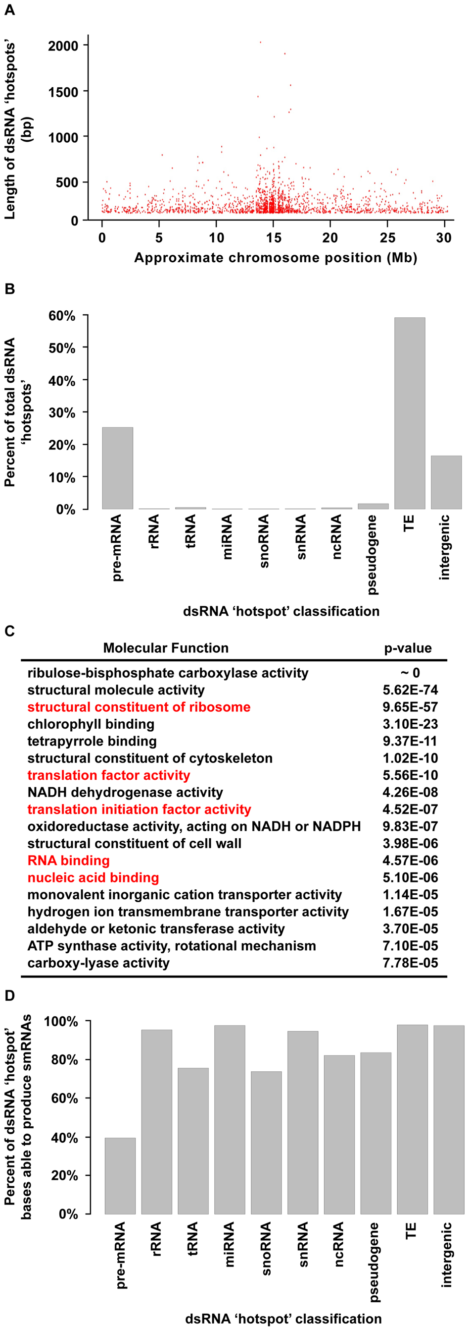 """Highly base-paired segments of the <i>Arabidopsis</i> genome (dsRNA """"hotspots"""")."""