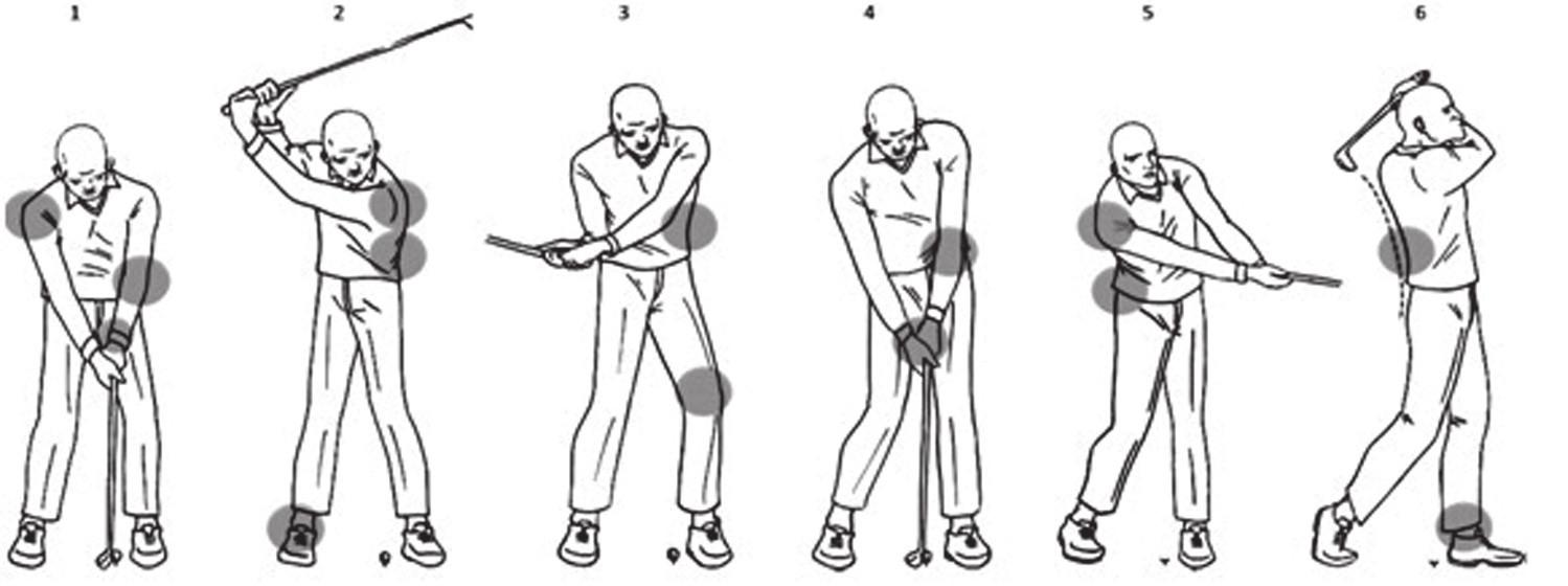 Místa výskytu častých zranění během jednotlivých fází švihu (3).