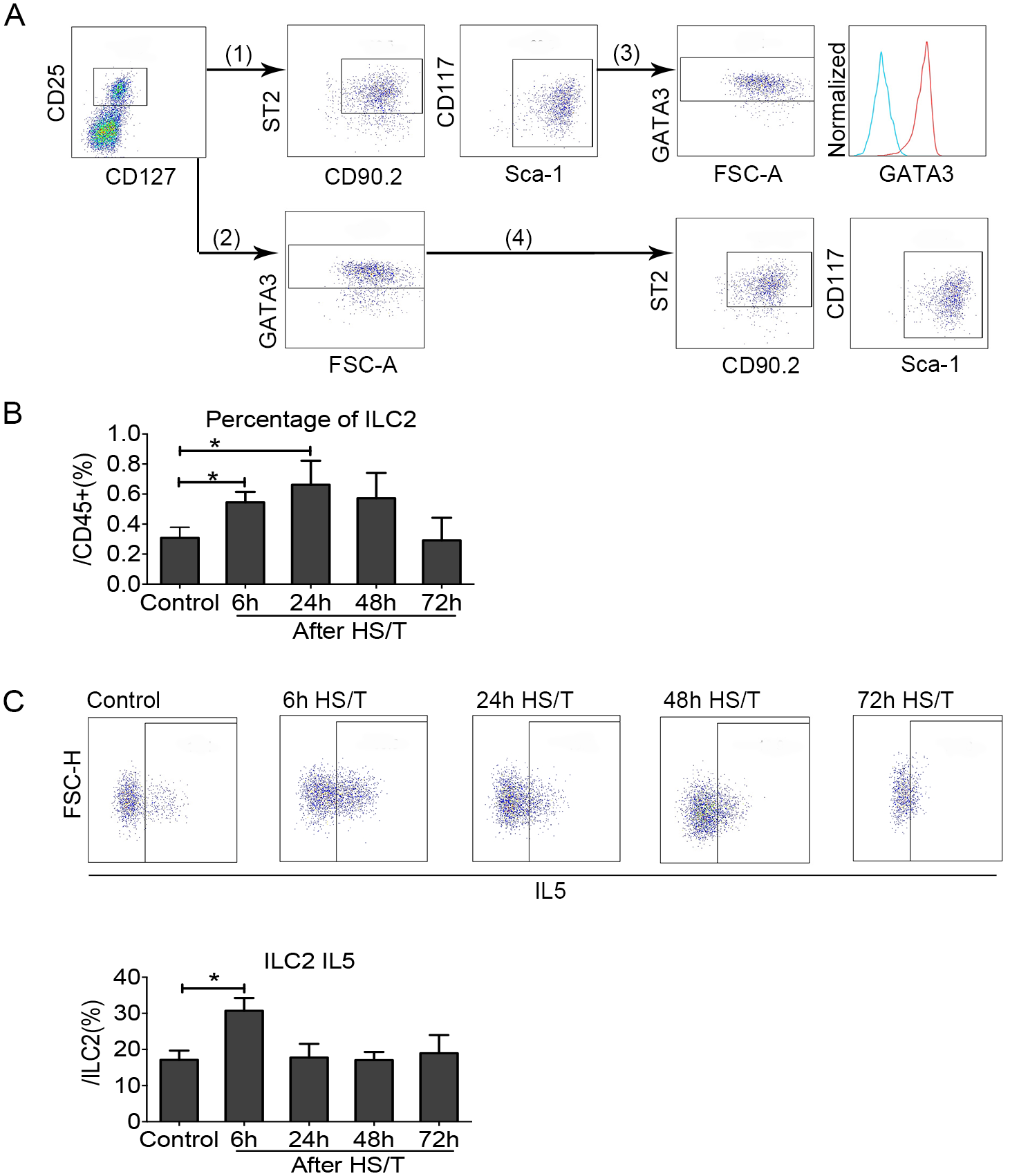 Change of group 2 innate lymphoid cells (ILC2) in the lungs of mice after resuscitated hemorrhagic shock and tissue trauma (HS/T).