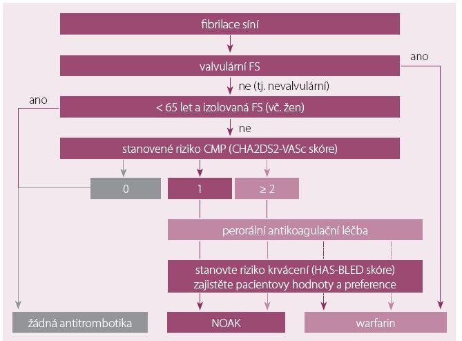 Doporučení antikoagulační léčby podle CHA2DS2-VASc.