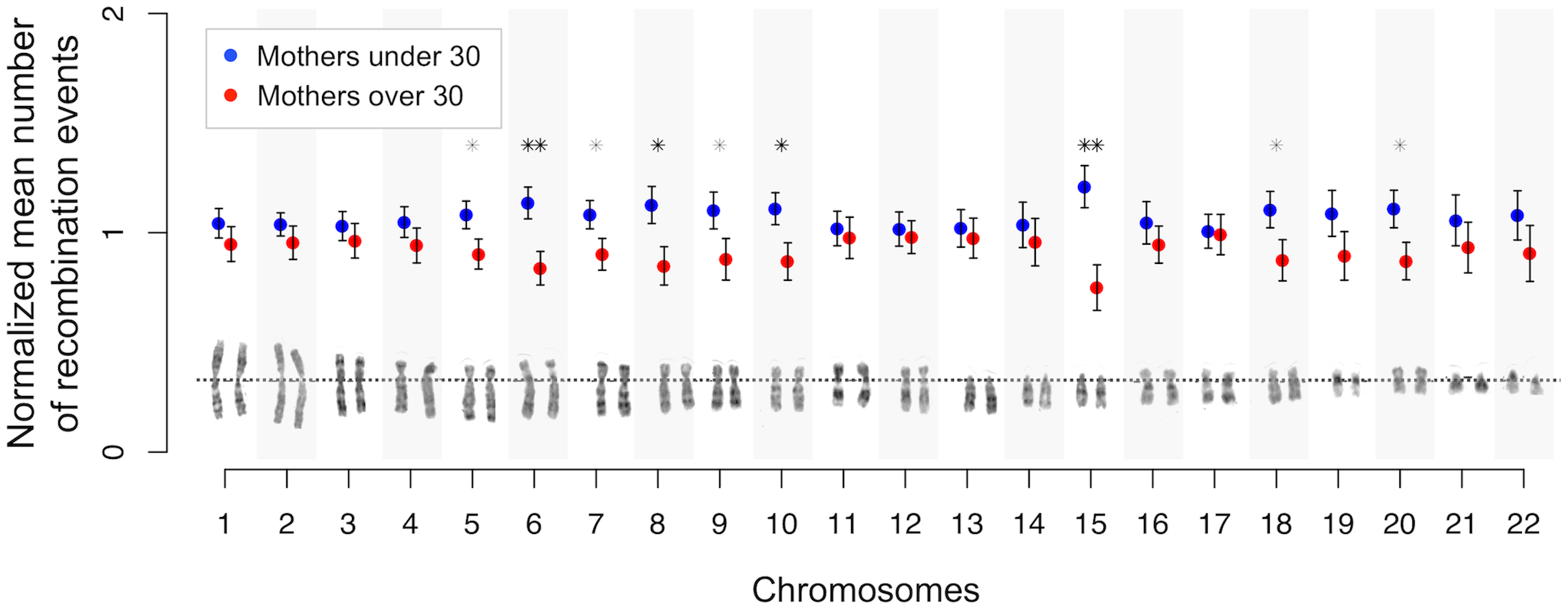 Chromosome-specific shifts in normalized means (and standard errors) of the number of maternal crossovers for mothers under and over 30 years of age.