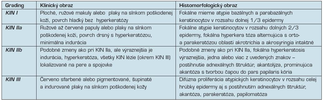 """Kritéria pre """"grading"""" keratinocytovej intraepidermálnej neoplázie (8, 13, 40)"""