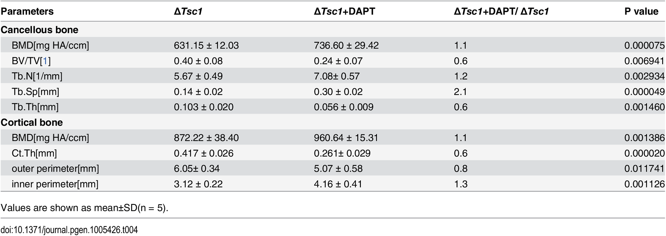 Micro CT analysis of DAPT-treated ΔTsc1 mice at 10 weeks of age.