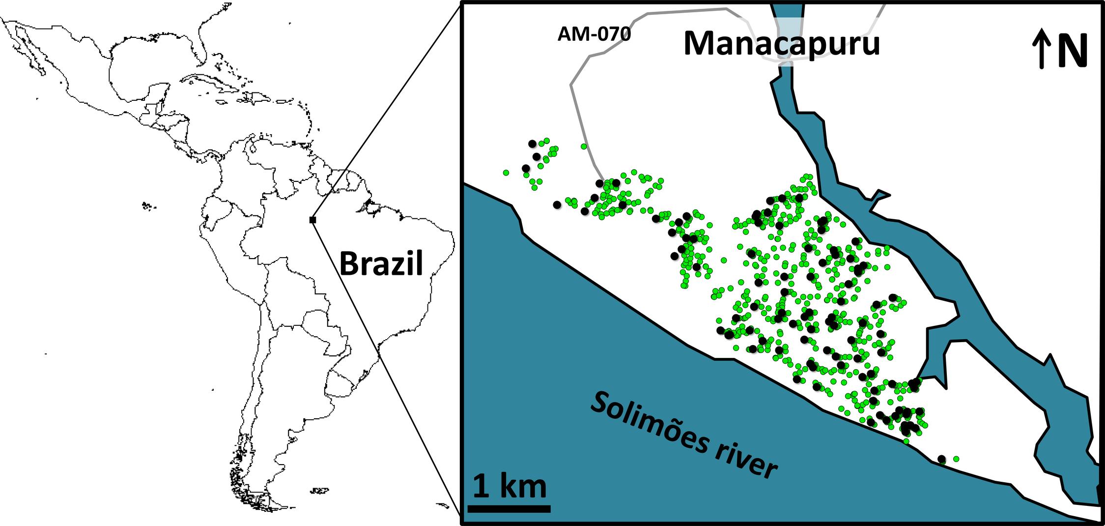 Study site: the city of Manacapuru, state of Amazonas, Brazil.