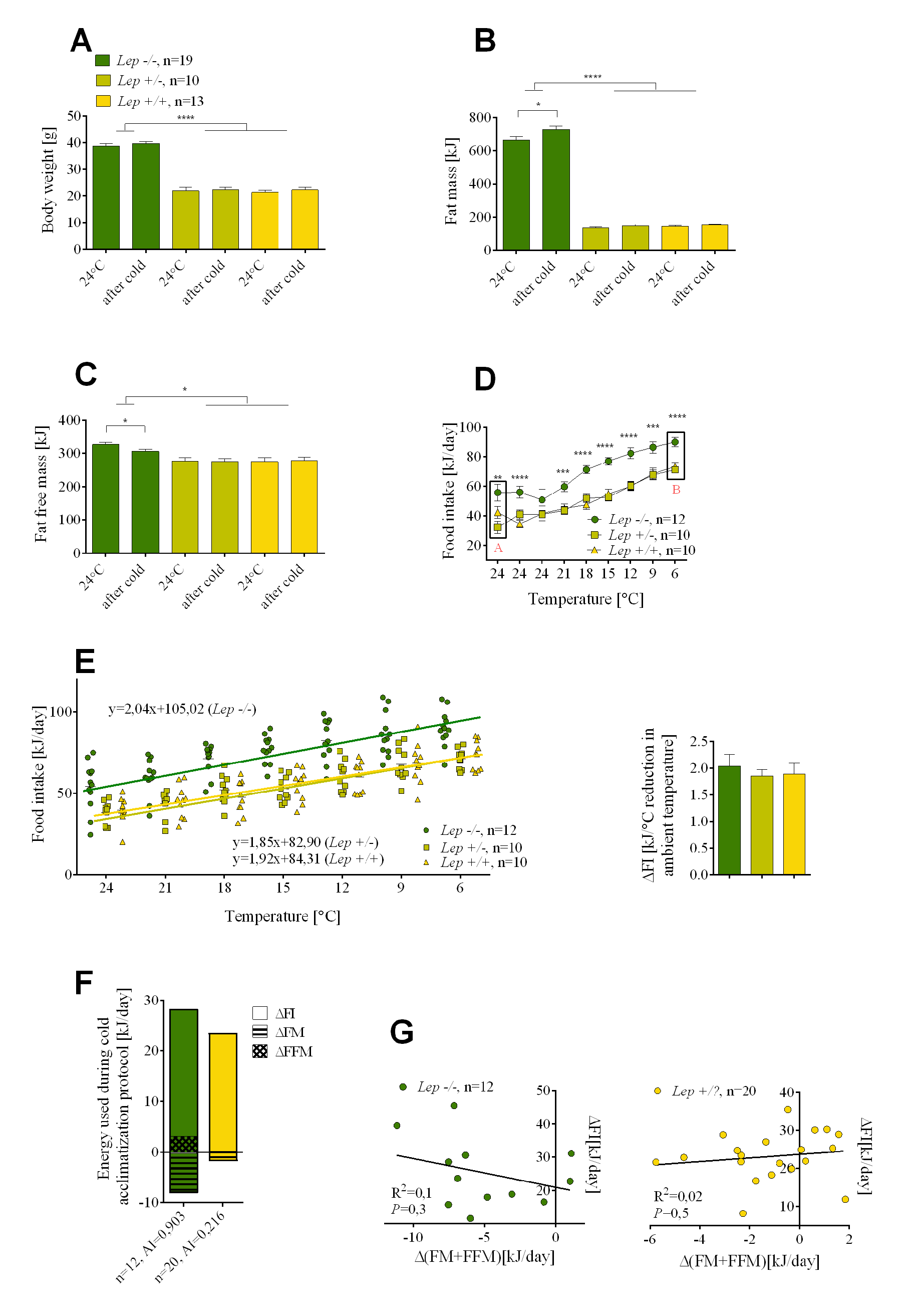 The effects of leptin deficiency on the relative utilization of food intake and endogenous energy stores during cold-induced energy expenditure.