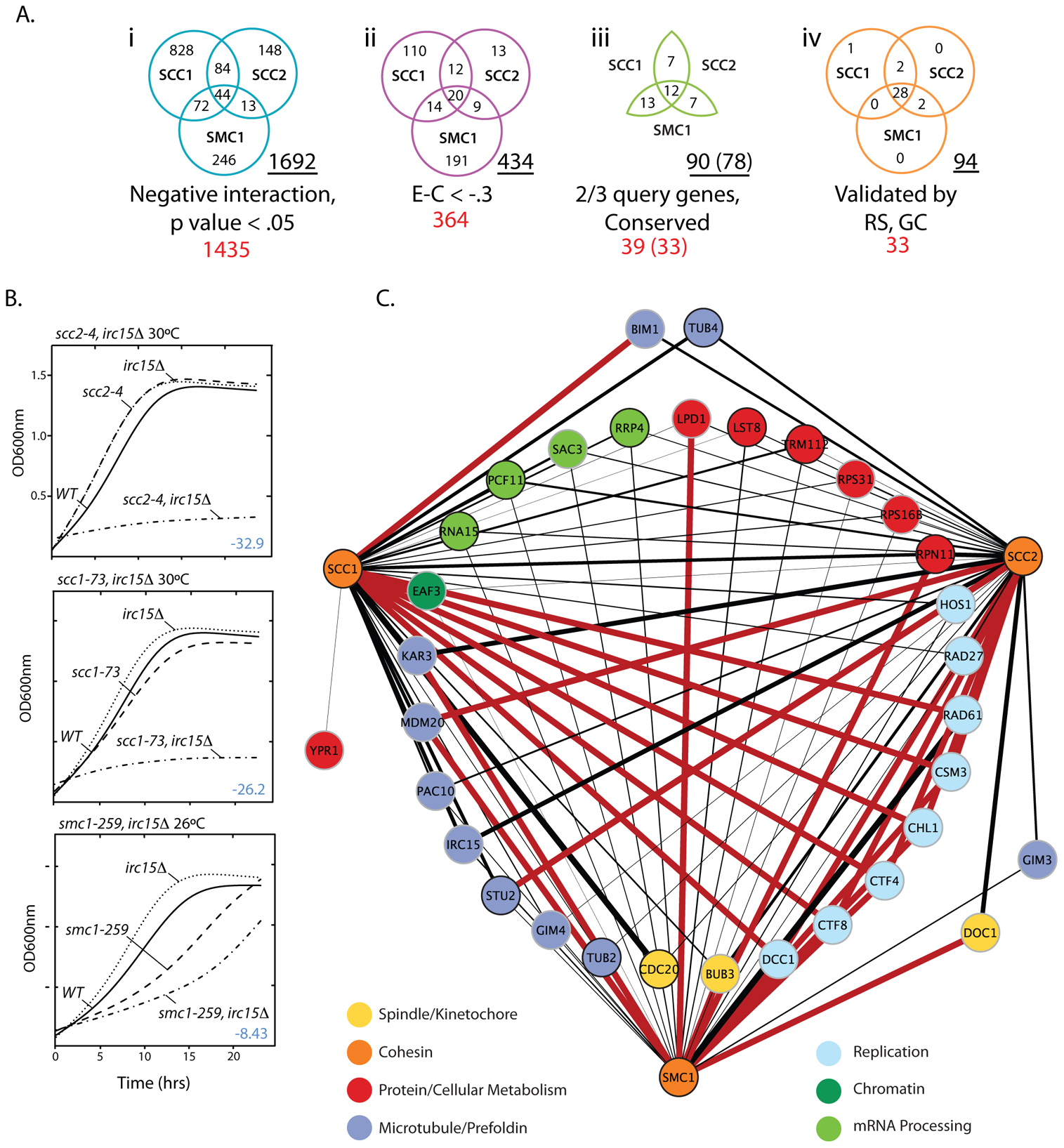 <i>S. cerevisiae</i> cohesin genetic interaction network.