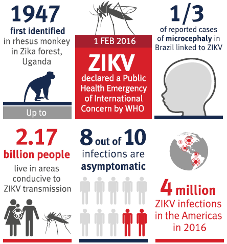 Zika virus infection has rapidly emerged as a significant global threat. See text for further details