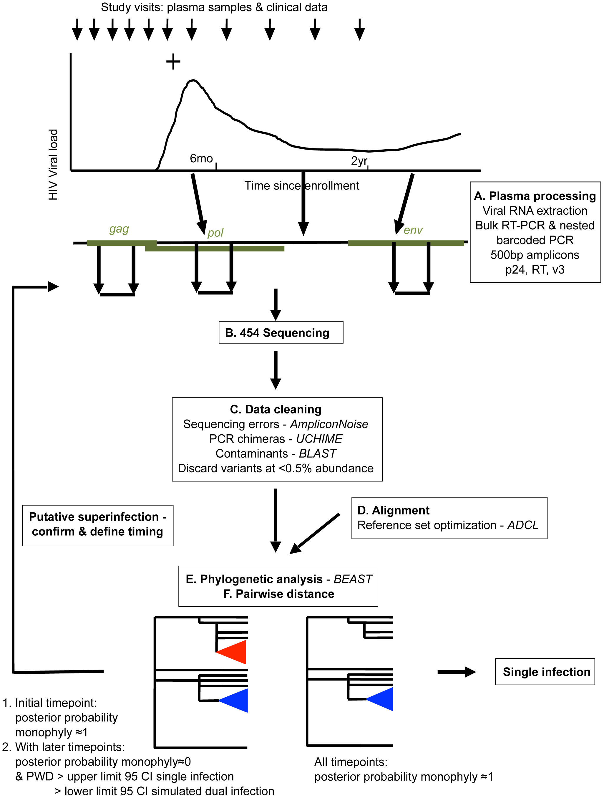 Overview of NGS superinfection screening pipeline.
