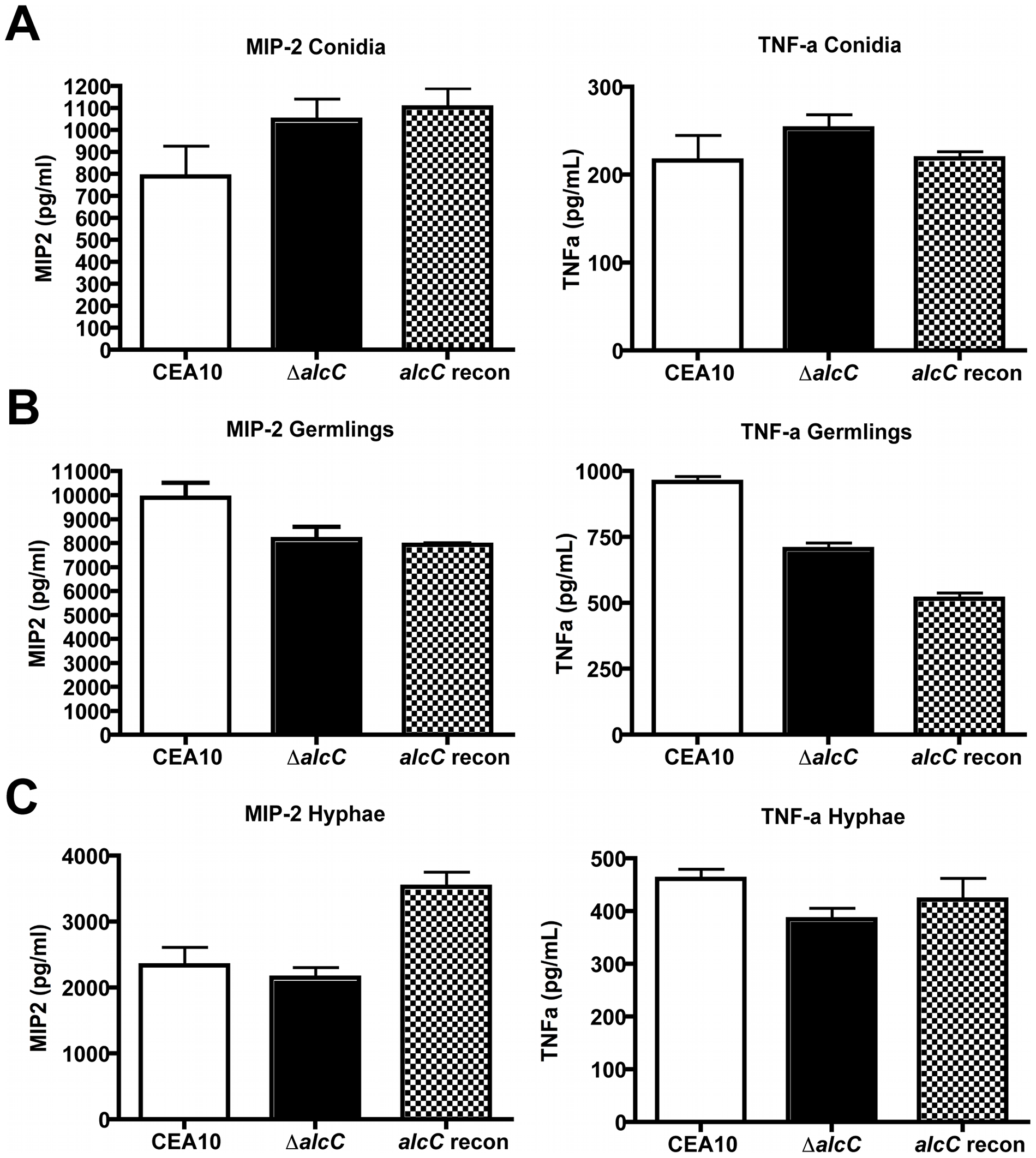 Increased cytokine response is not caused by cell wall changes of the Δ<i>alcC</i> strain.